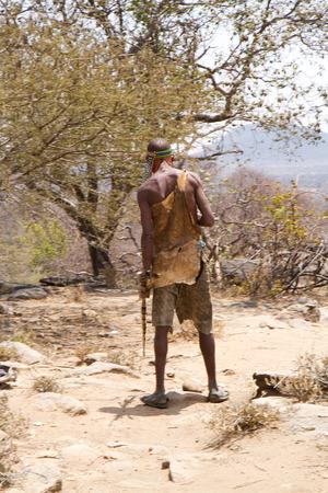 gatherer: hadzabe tribe, man walking in the savannah