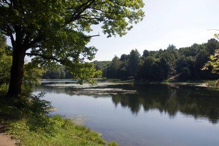 riverine: nature in a riverine bush