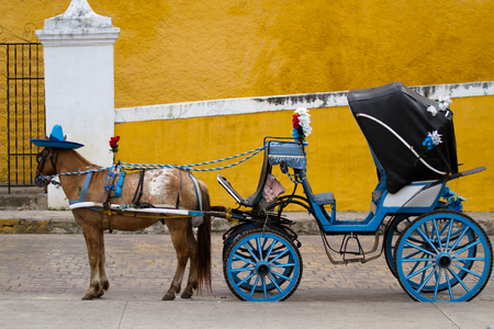 colonial house: horse carriage in izamal  in mexico
