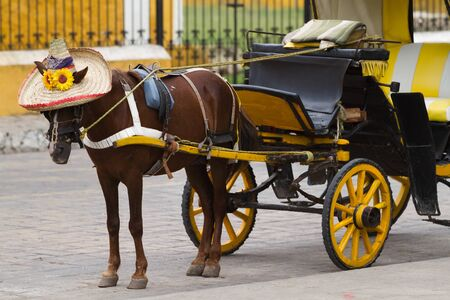 yucatan: carriage in typical mexican style in izamal, yucata, mexico Stock Photo