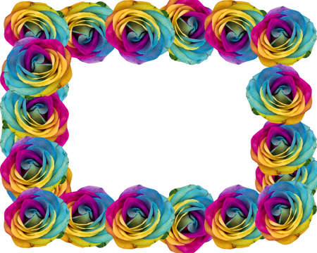 Decorative multicolored rainbow roses frame isolated in white