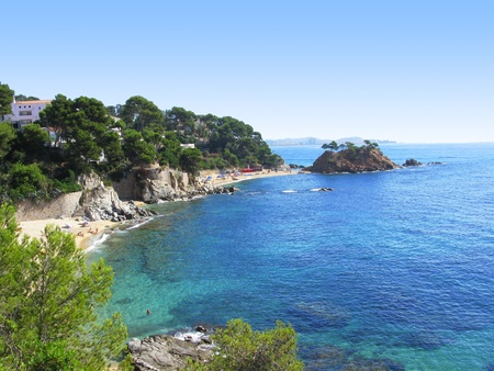 catalonia: A beautiful corner in Costa Brava(Spain), transparent water between trees and pines.