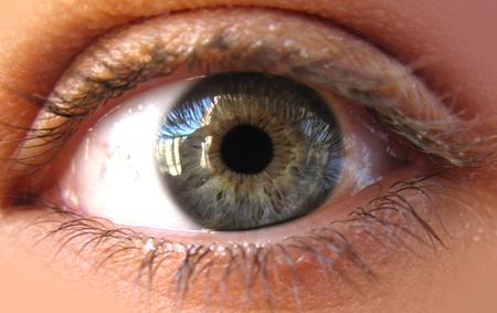 Blue Iris ojos en una foto macro. Primer plano