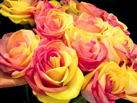 Pretty bicolor yellow and pink roses bouquet Stock Photo