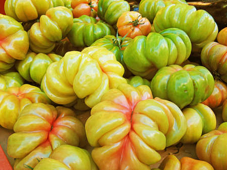 tomatos: Green tomatoes - close up
