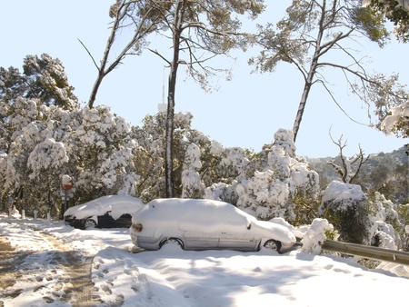 Snow covered car sorrounded by snow covered trees. It was during the big snow that took place in Barcelona on 8th march photo