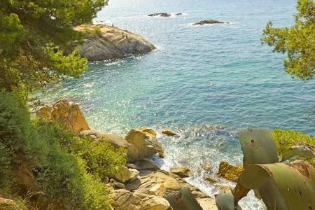 Beautiful sea shore and rocks in Costa Brava (Spain) photo