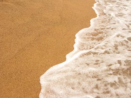 shore line: Foamy shore line in the beach  Costa Brava, Spain