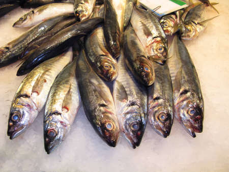 provisions: Variety of fresh fish in the market Stock Photo