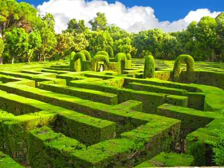 maze game: English green labyrinth with a cloudy sky