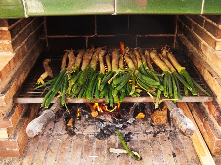 calsots: Calçots, catalan sweet and young onions being roasted in the barbecue