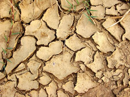 Dried earth during a drought Stock Photo - 13322286