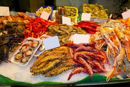 Variety of fresh shellfish in the market photo