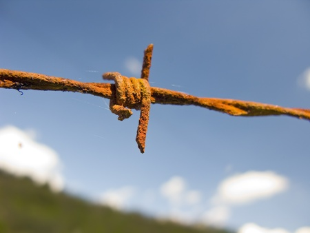 Barbed wire fence, over a blue sky. Detail close up.