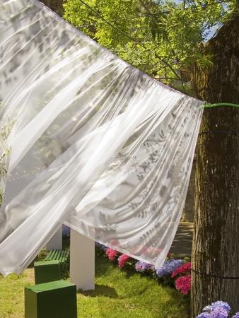 ropa colgada: La ropa blanca que cuelgan en el jardín