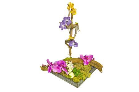 Decorative flower arrangement, isolated in white photo