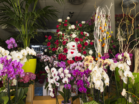 Colorful orchids and roses on a flowershop Stock Photo