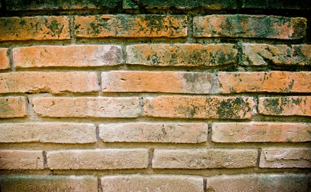 Old wall texture background Stock Photo - 15576463