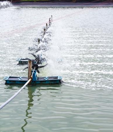aeration: aeration turbine generate oxygen in shrimp farm