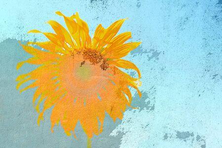 flower artistic on grunge wall