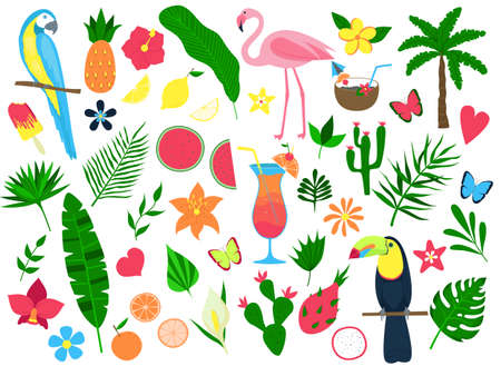 Colorful set of summer tropical elements. Leaves and flowers, fruits, cocktails, birds. Set of stickers, print. Vector illustration