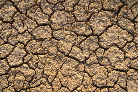 barrenness: land with dry cracked ground Stock Photo