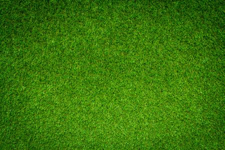 Green grass background Фото со стока - 90767324