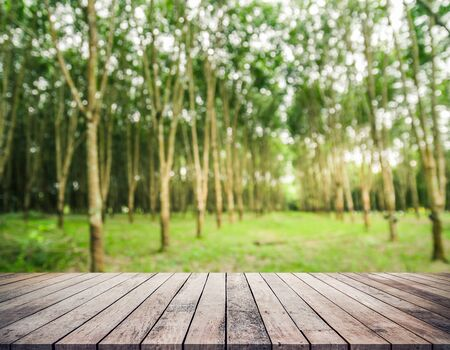 Old wood plank with abstract rubber plantation blurred background for product display Фото со стока