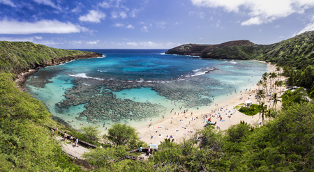 Snorkelling at the coral reef of Hanauma Bay, a former volcanic crater, now a national reserve