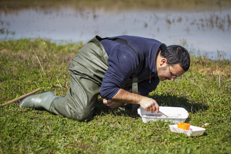 Scientist sorting biological net samples at a wetland Stock Photo