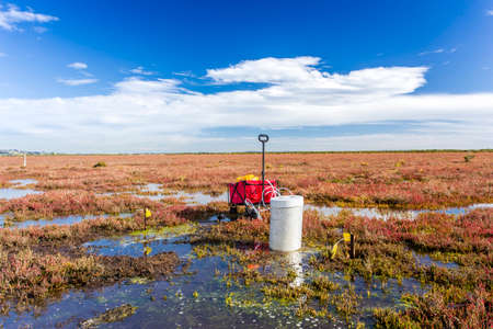 Portable gas analyser and chamber for measuring greenhouse gas emission at a coastal saltmarsh to understand the role of tidal marshs in carbon sequestration.