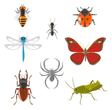 Insect icon set Stock Vector - 12796101