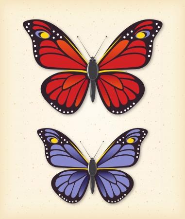 fly cartoon: Summer butterfly set