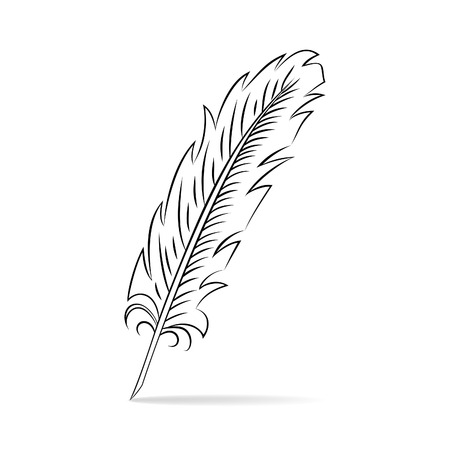 Hand drawn feather Stock Vector - 23681280