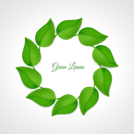 green leaves border: Green leaves border Illustration