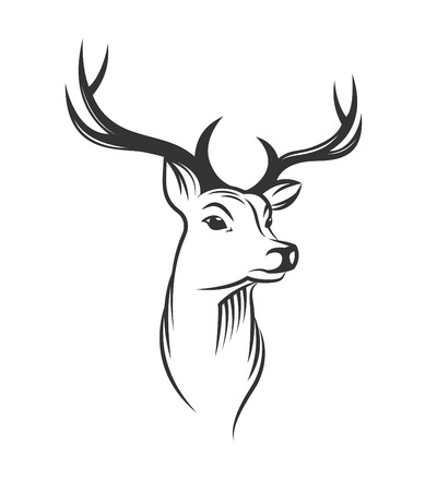 geyik: Beyaz zemin üzerine geyik kafası Çizim