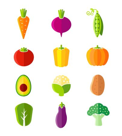beet root: Fresh healthy vegetables in flat style organic icons