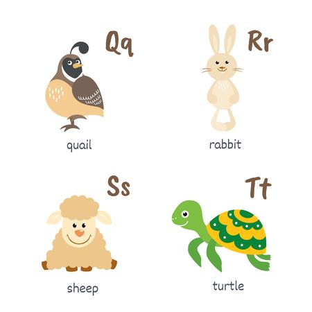 Alphabet animal avec des caractères de tortue de mouton de lapin de caille