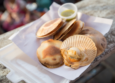scallops: grilled scallops in their shell