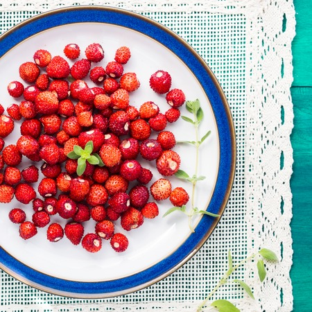 wild marjoram: Wild strawberries on a plate with green marjoram sprig, square image