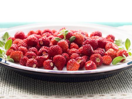 wild marjoram: Wild strawberries on a plate with green marjoram sprig