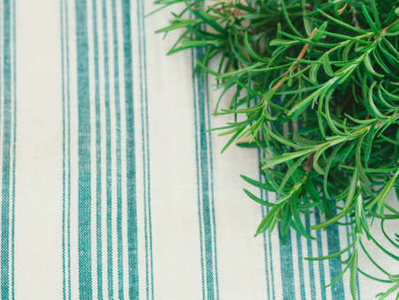 flatly: Rosemary sprigs on white and green napkin. Top view