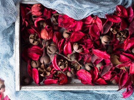 Dark pink Dried flowers in a wooden tray on blue. Romantic abstract background.