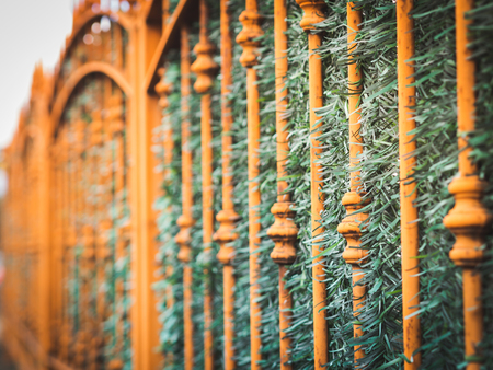 Urban detail - metal fence of a building
