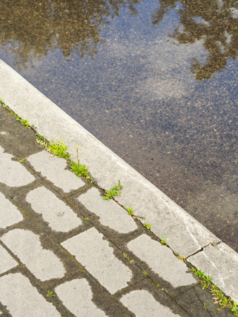 Wet pavement with vegetation and puddle in the city. Urban detail Фото со стока