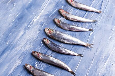 Fish pattern. Fresh anchovies on blue sea effect background. Trendy food concept