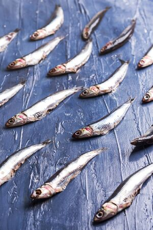 Fish isometric pattern. Fresh anchovies on blue sea effect background. Trendy food concept