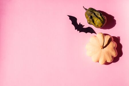 Halloween pumpkin and black bat decor on trendy pink background. Flat lay mock up frame