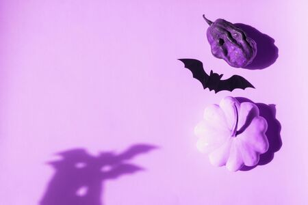 Halloween pumpkin and black bat decor with shadow on purple background. Flat lay mock up frame