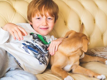 Little blonde boy playing with his recently adopted puppy on couch. New friend